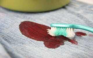 Як вивести засохлі плями крові з одягу, оббивки і килима?