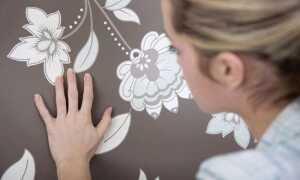 Як зафарбувати пляму на стіні: види забруднень і способи їх усунення