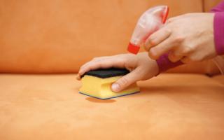 Як вивести пляму від блювоти з дивана або одягу і усунути неприємний запах?