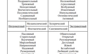 Типи темпераменту: коротка характеристика, види (меланхолік, флегматик, холерик, сангвінік)