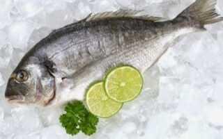 Скільки зберігається риба в морозилці: терміни і правила зберігання