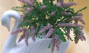 Квіти з бісеру: схеми плетіння для початківців своїми руками, як плести, повний опис покроково